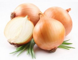 «البصل» يزيد الخصوبة ويعالج تشققات الثدي