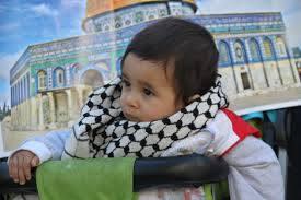 دعوة من أجل تدارس الصيغ التضامنية مع فلسطين