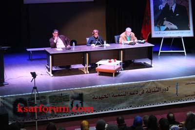 ندوة: دور الثقافة في دعم التنمية الجهوية