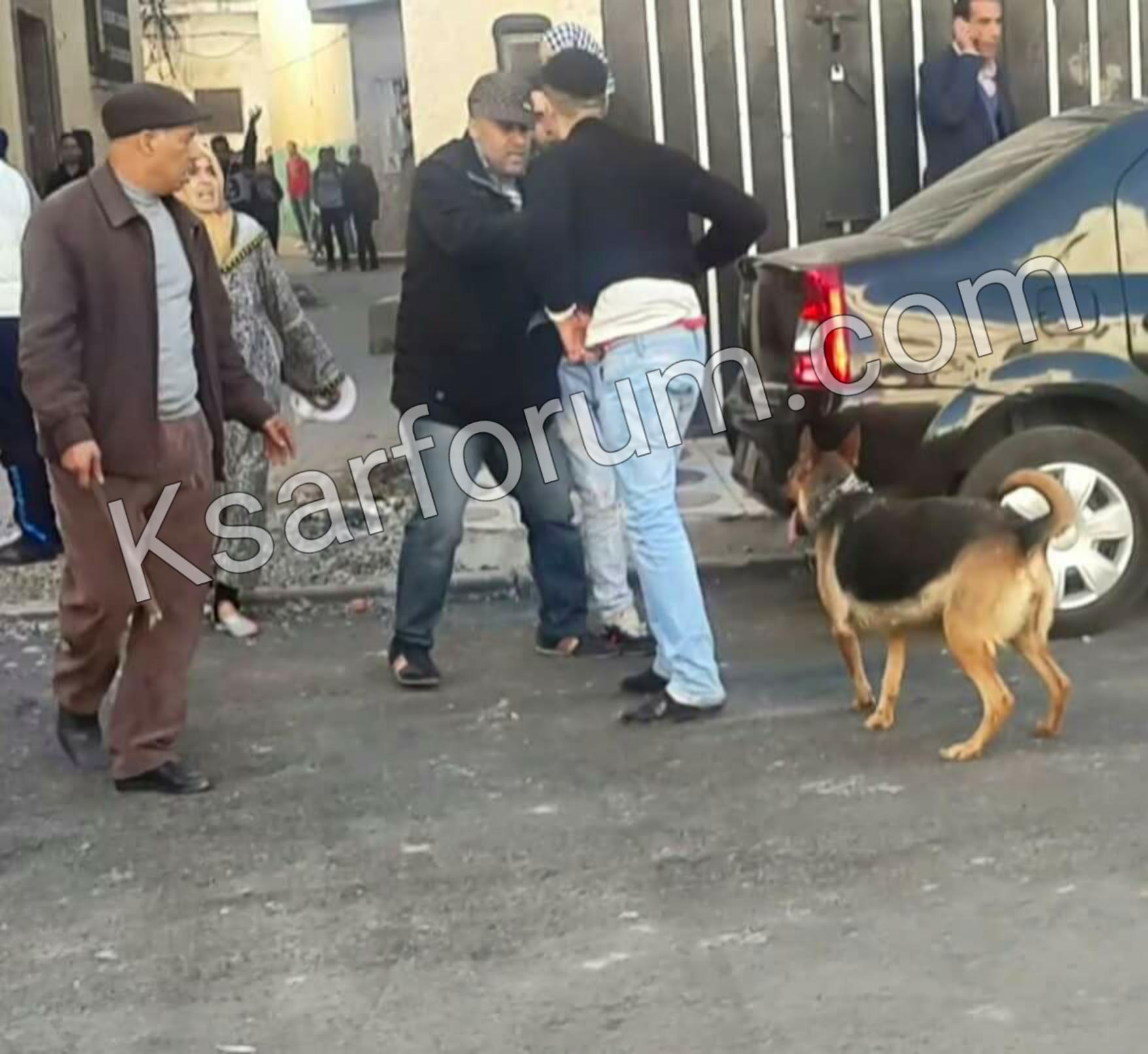 خطير .. إصابة عناصر من الشرطة هاجمهم كلب أثناء محاولة توقيف عصابة
